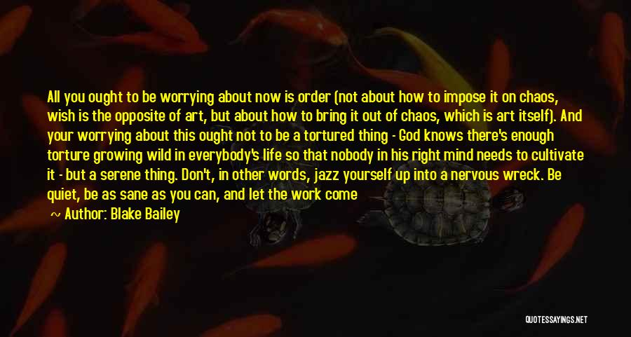 Not Worrying About Work Quotes By Blake Bailey