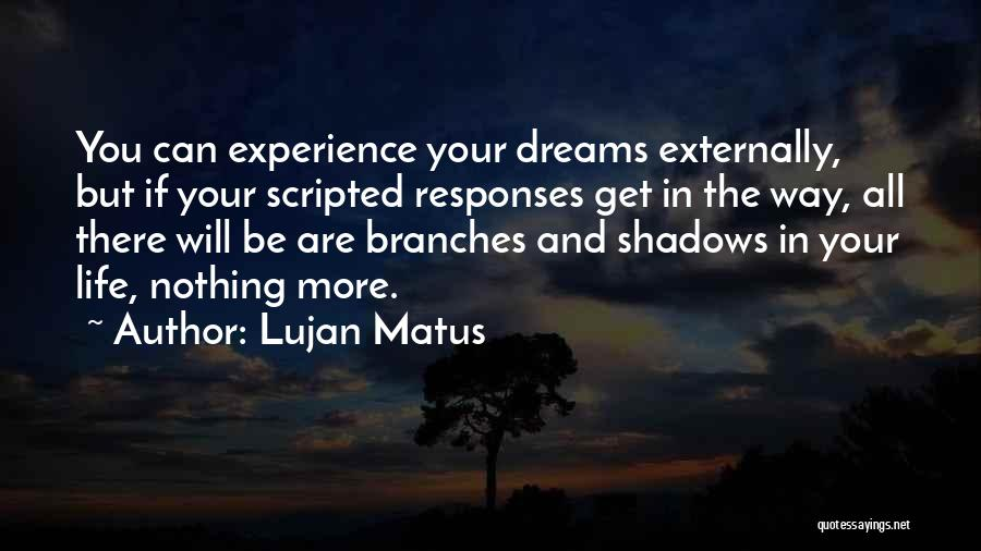 Nothing But Shadows Quotes By Lujan Matus