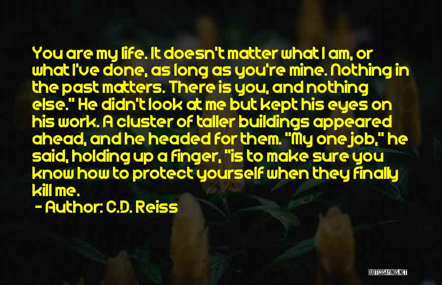 Nothing Else Matters But You Quotes By C.D. Reiss