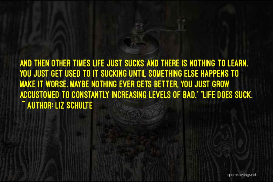 Nothing Ever Gets Better Quotes By Liz Schulte