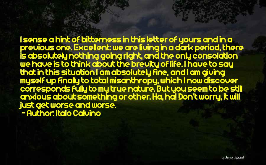 Nothing Going Right In Life Quotes By Italo Calvino