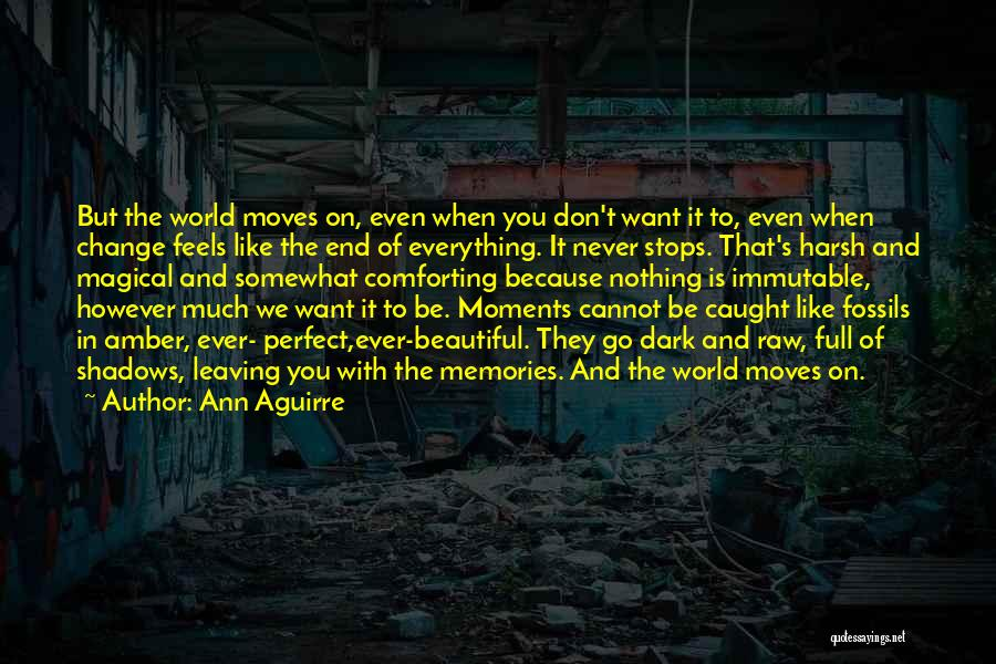 Nothing Is Never Perfect Quotes By Ann Aguirre