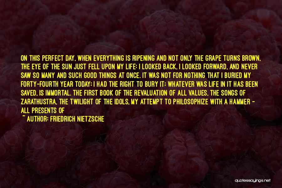 Nothing Is Never Perfect Quotes By Friedrich Nietzsche