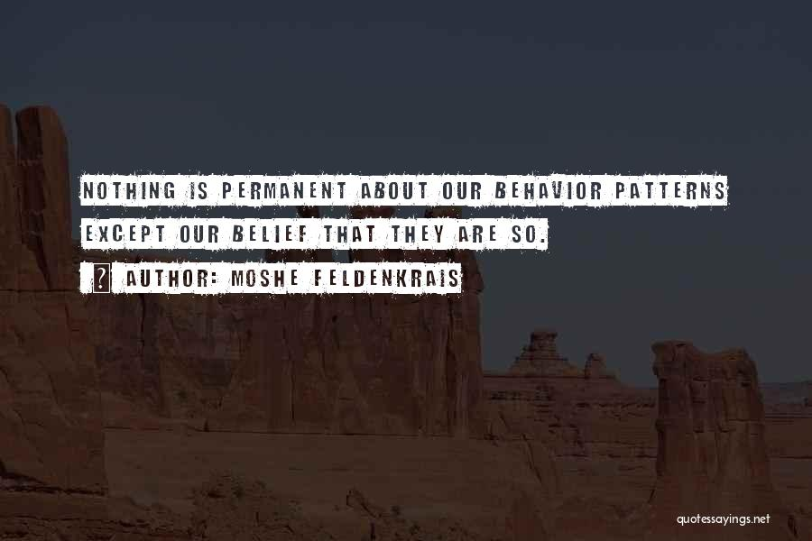 Nothing Is Permanent Quotes By Moshe Feldenkrais