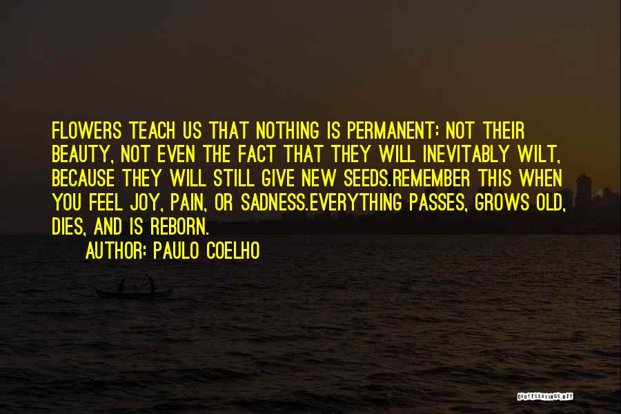 Nothing Is Permanent Quotes By Paulo Coelho