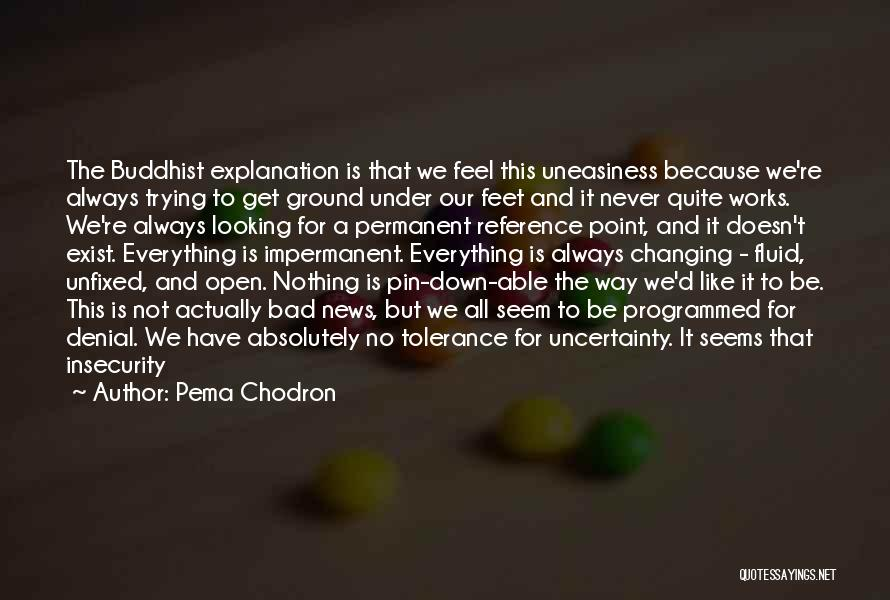 Nothing Is Permanent Quotes By Pema Chodron