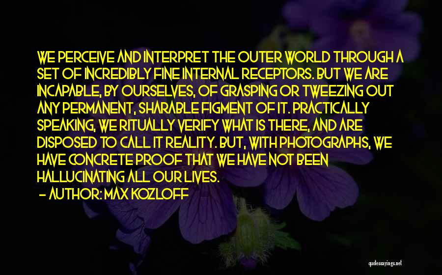 Nothing Permanent In This World Quotes By Max Kozloff
