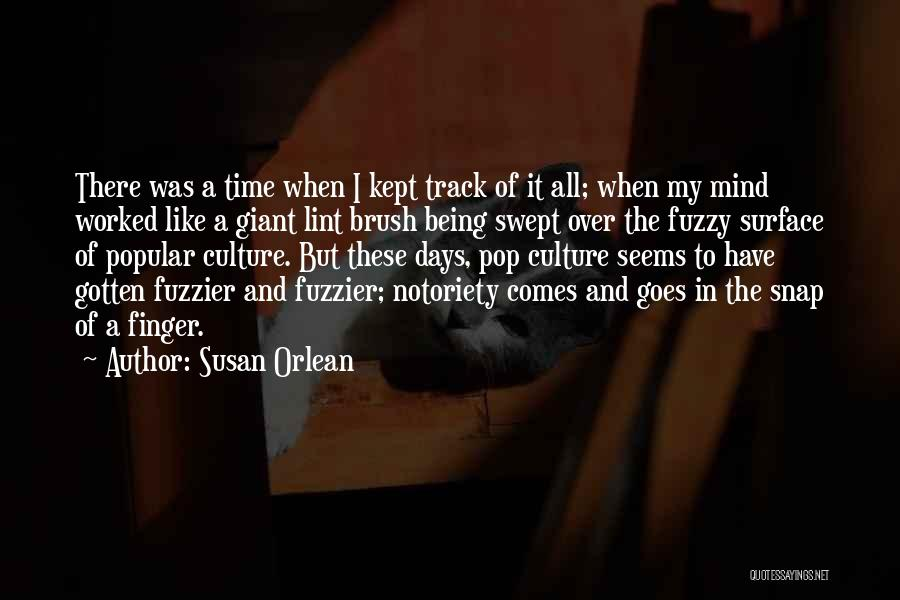 Notoriety Quotes By Susan Orlean