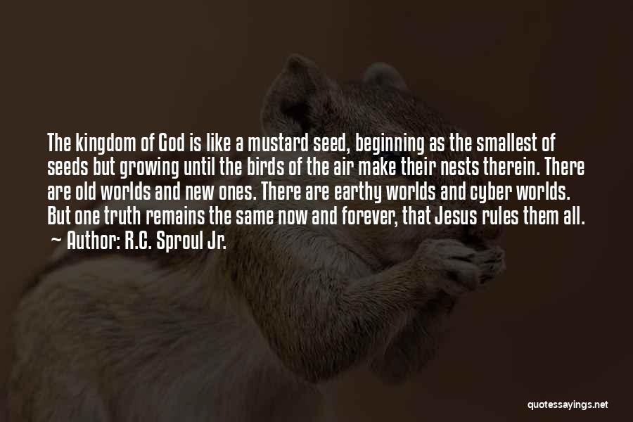 Now And Forever Quotes By R.C. Sproul Jr.