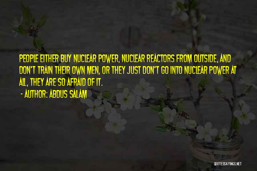 Nuclear Quotes By Abdus Salam