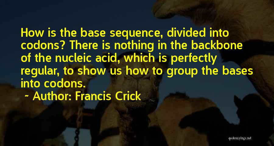 Nucleic Acid Quotes By Francis Crick