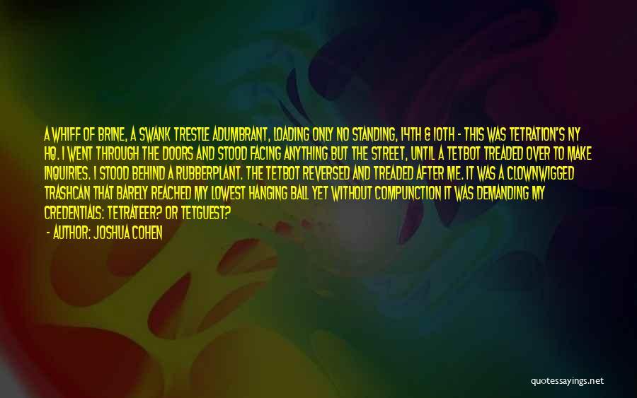 Ny Quotes By Joshua Cohen