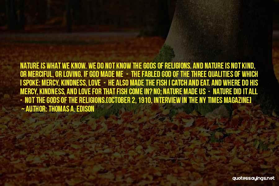Ny Quotes By Thomas A. Edison