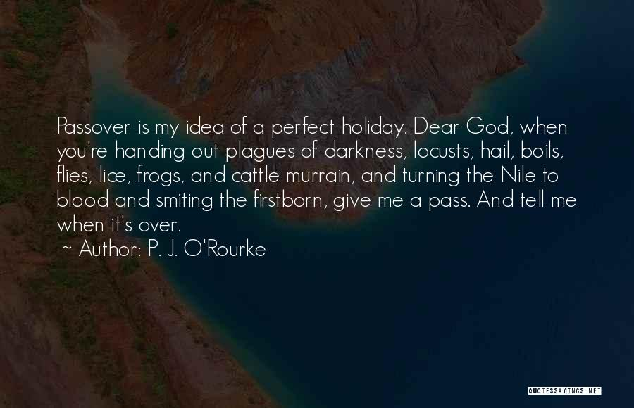 O My God Quotes By P. J. O'Rourke