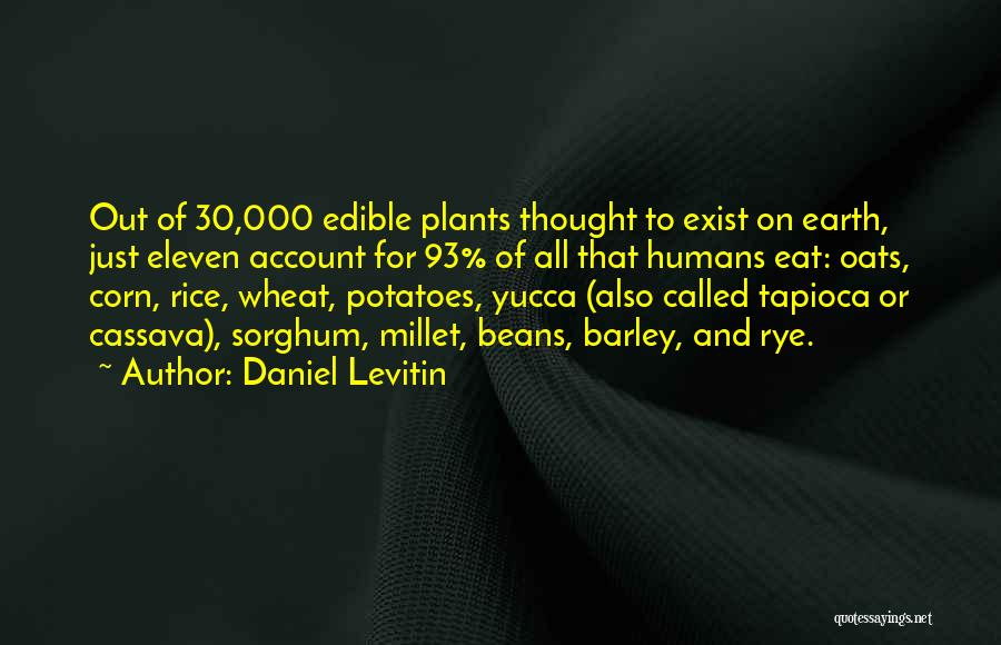 Oats Quotes By Daniel Levitin