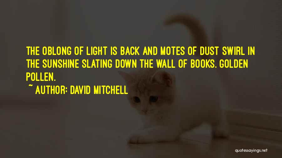 Oblong Quotes By David Mitchell