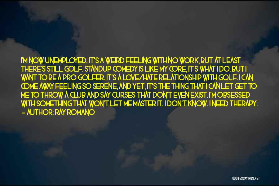 Obsessed Love Quotes By Ray Romano