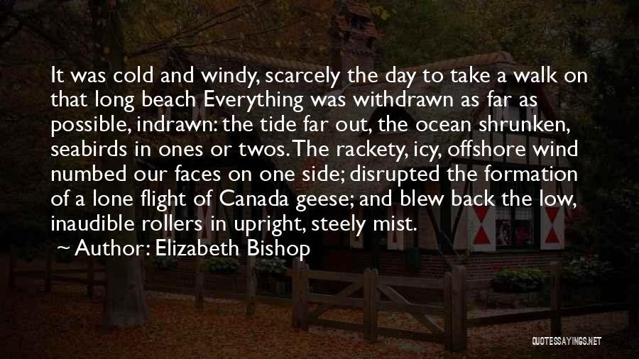 Ocean Mist Quotes By Elizabeth Bishop