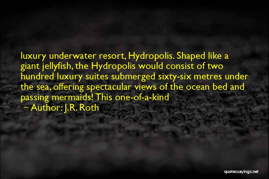 Ocean Views Quotes By J.R. Roth