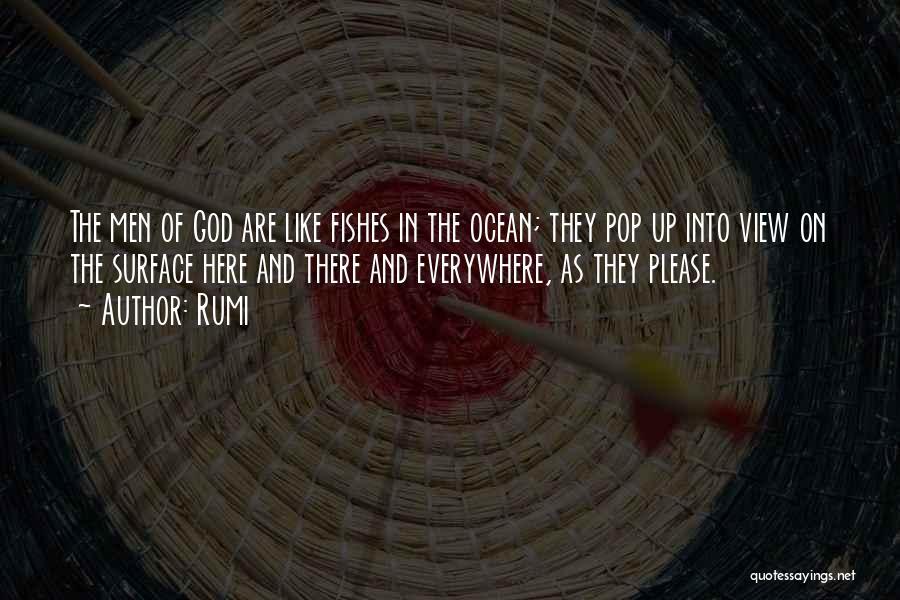 Ocean Views Quotes By Rumi