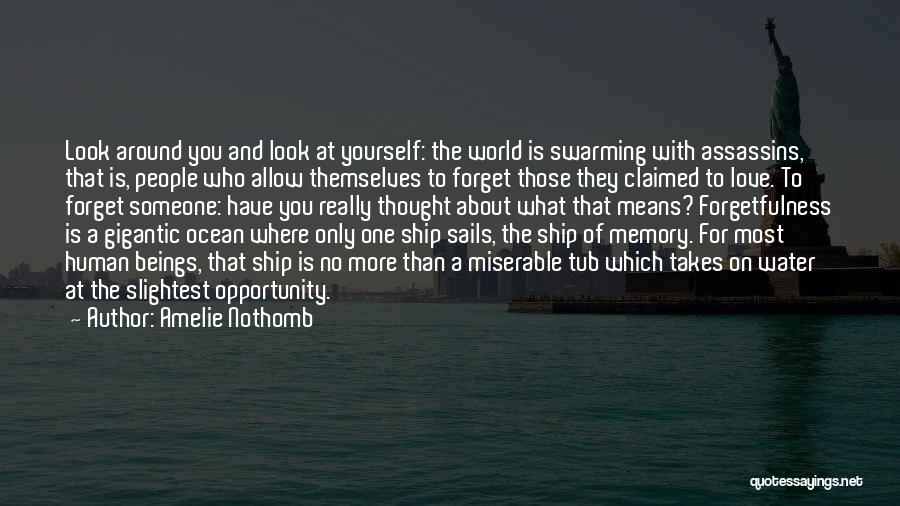 Ocean Water Quotes By Amelie Nothomb