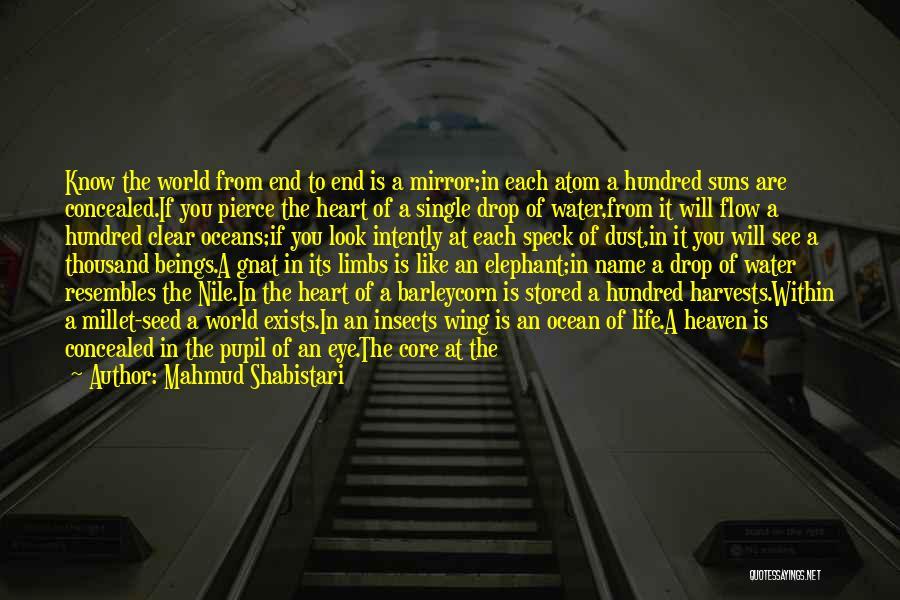 Ocean Water Quotes By Mahmud Shabistari