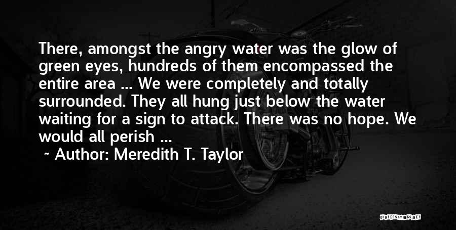 Ocean Water Quotes By Meredith T. Taylor