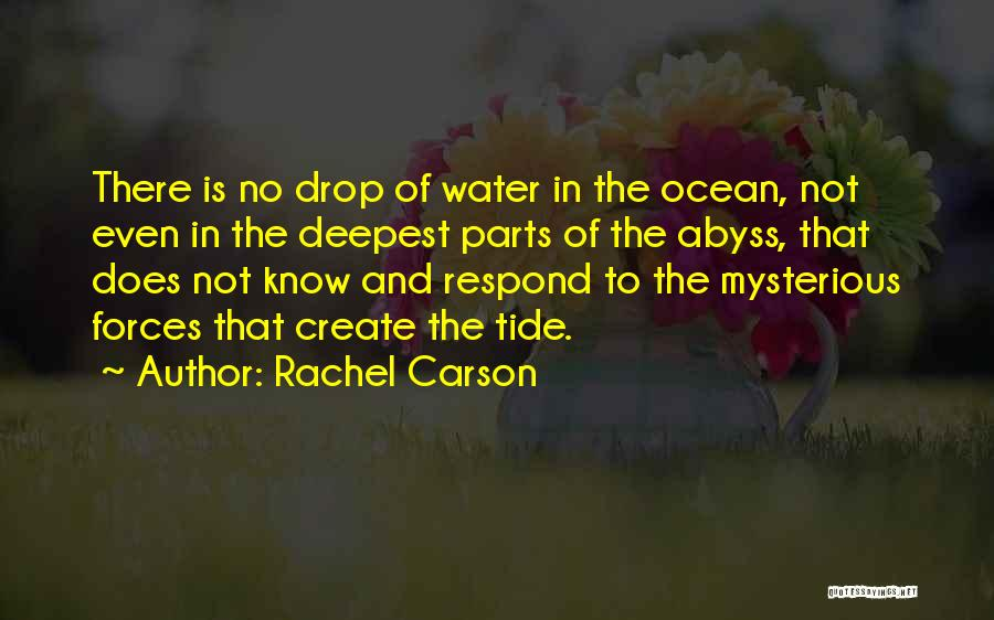 Ocean Water Quotes By Rachel Carson