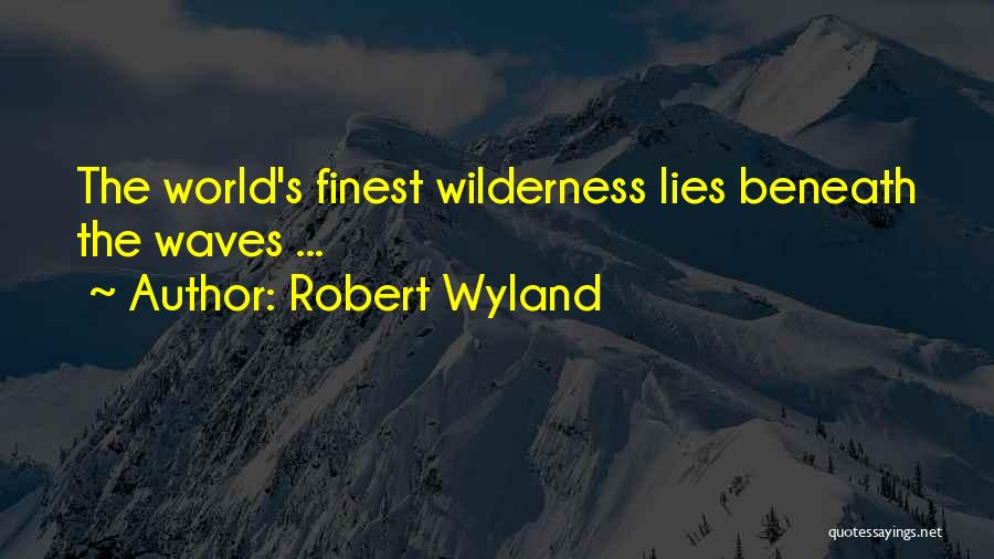 Ocean Waves Quotes By Robert Wyland