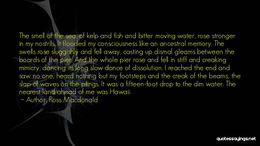 Ocean Waves Quotes By Ross Macdonald