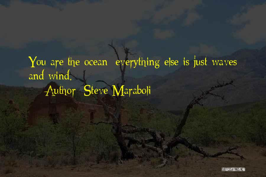 Ocean Waves Quotes By Steve Maraboli
