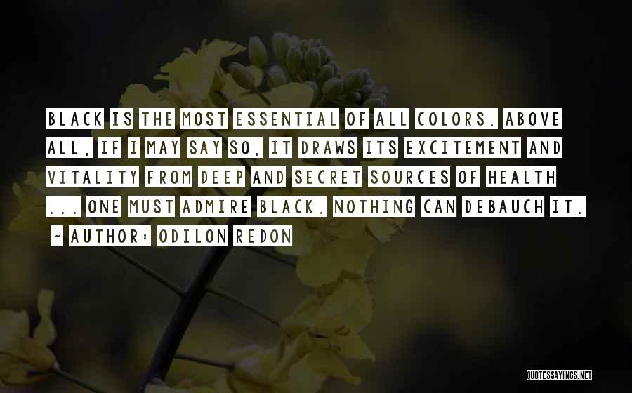 Odilon Redon Quotes 762500