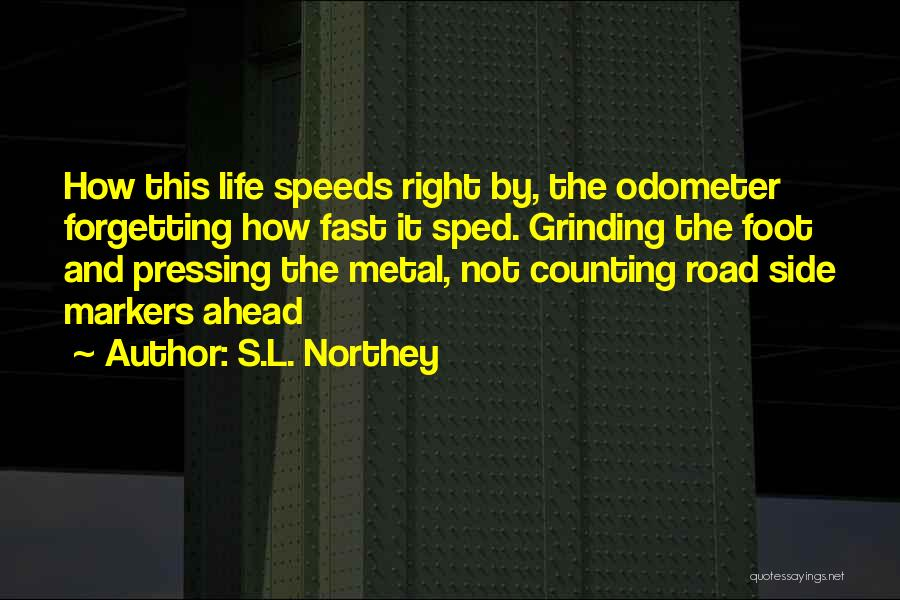 Odometer Quotes By S.L. Northey