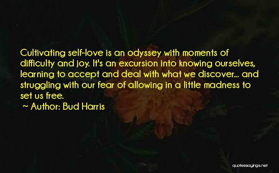 Odyssey Quotes By Bud Harris