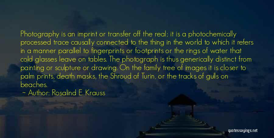 Off To The Beach Quotes By Rosalind E. Krauss