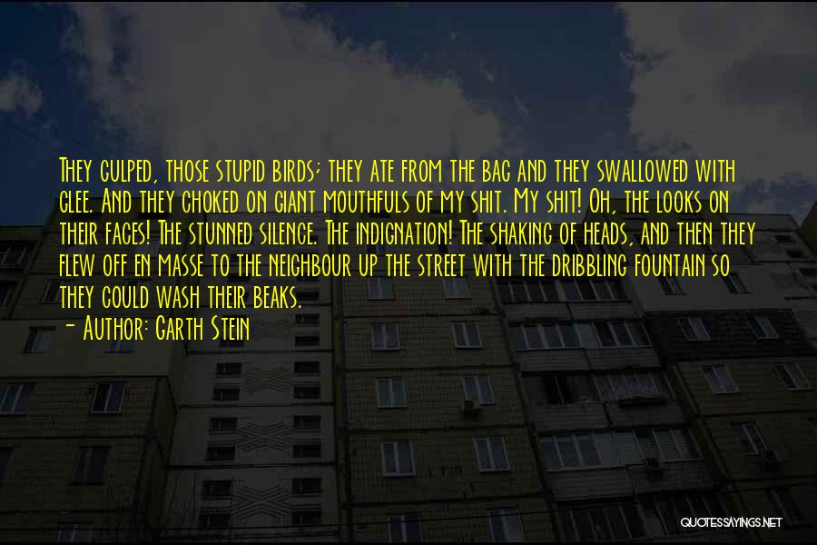 Off With Their Heads Quotes By Garth Stein