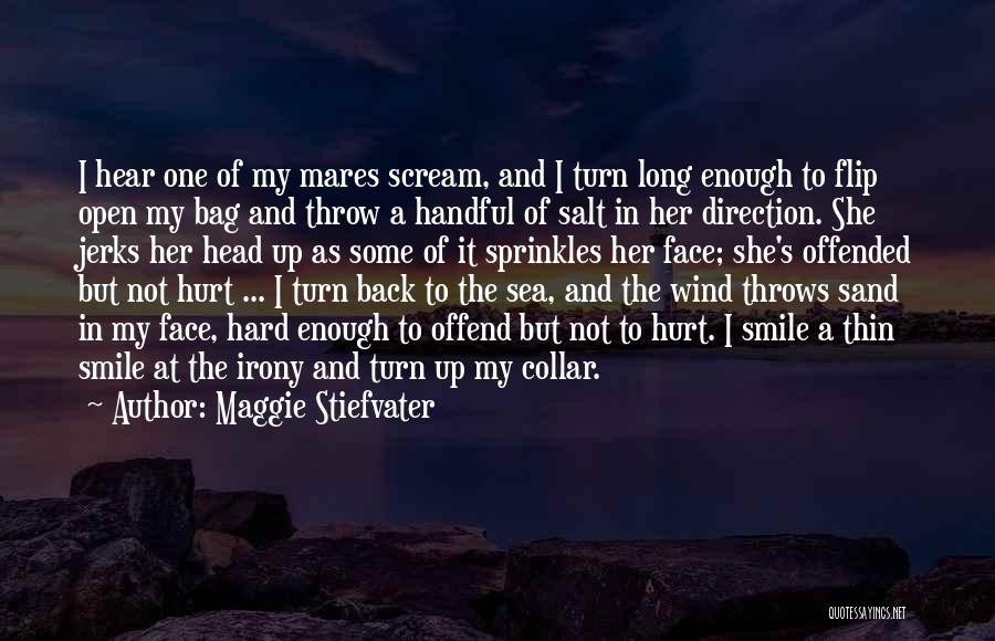 Offended Quotes By Maggie Stiefvater