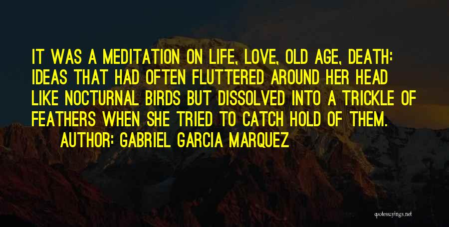 Old Age Life Quotes By Gabriel Garcia Marquez