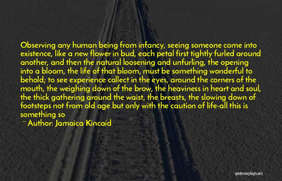 Old Age Life Quotes By Jamaica Kincaid