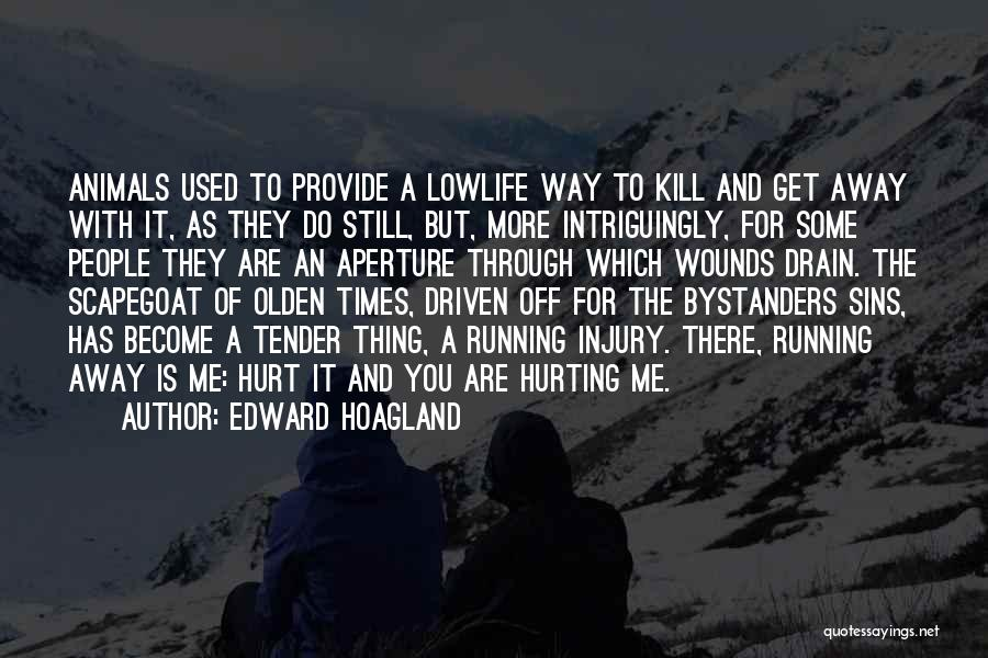 Olden Quotes By Edward Hoagland