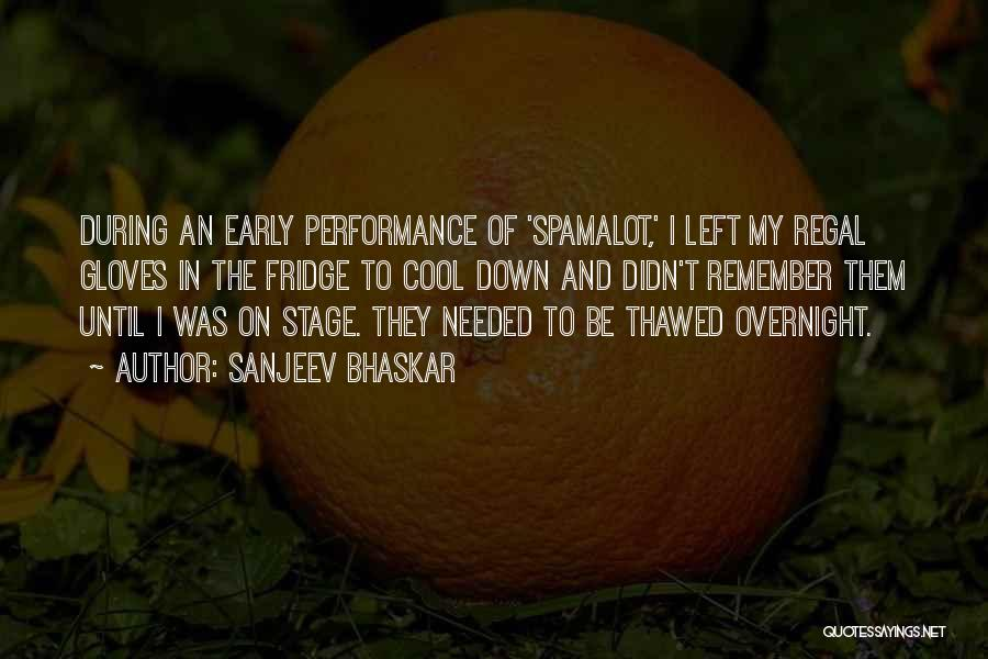 On Stage Performance Quotes By Sanjeev Bhaskar