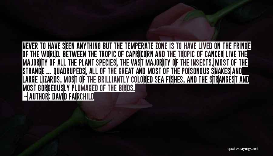 On The Sea Quotes By David Fairchild