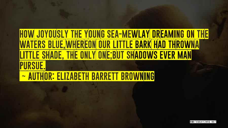 On The Sea Quotes By Elizabeth Barrett Browning