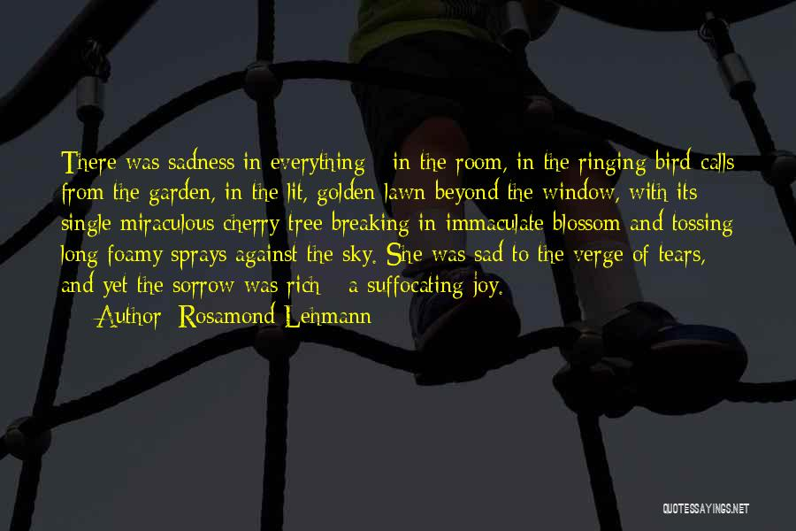 On The Verge Of Breaking Up Quotes By Rosamond Lehmann