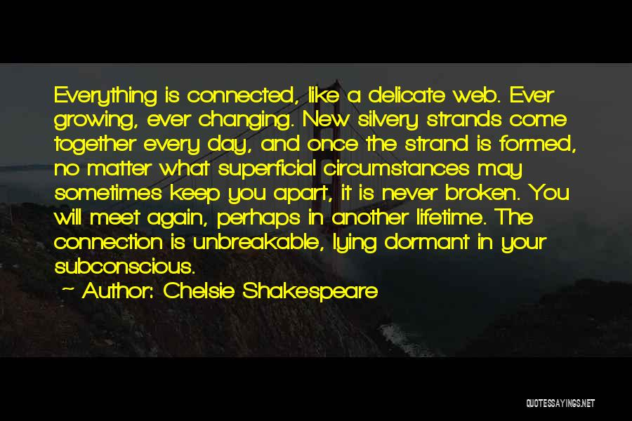 Once In A Lifetime Love Quotes By Chelsie Shakespeare