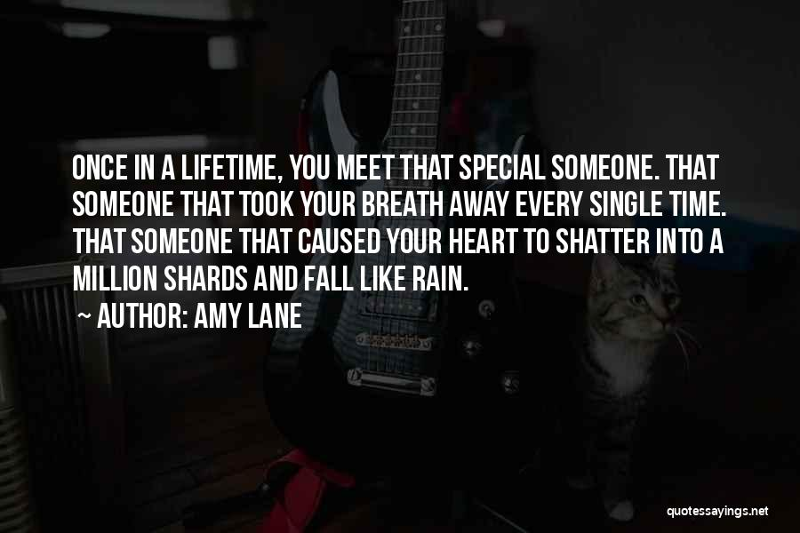Once In Your Lifetime Quotes By Amy Lane