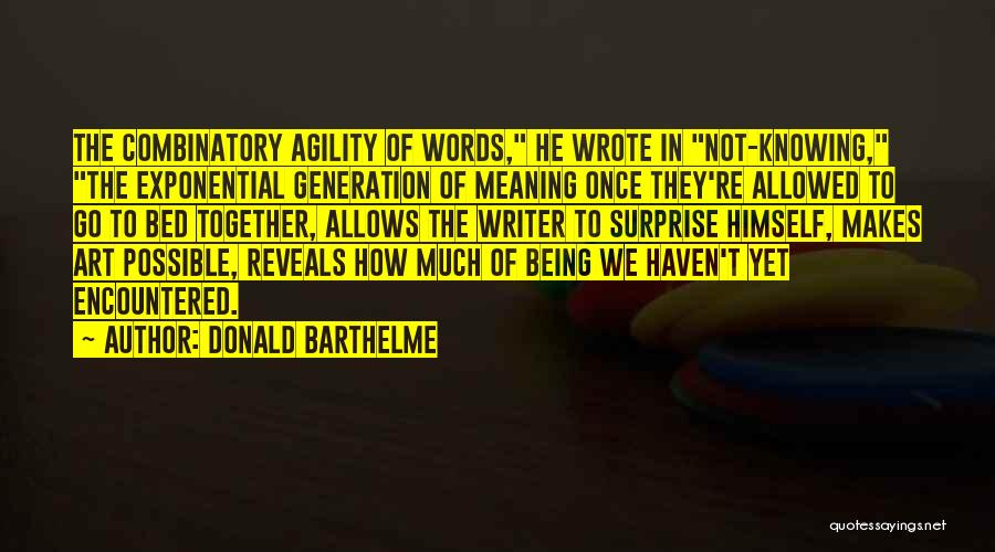 Once Wrote Quotes By Donald Barthelme