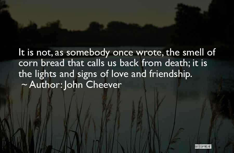 Once Wrote Quotes By John Cheever
