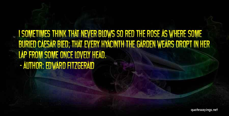 Once You Go Red Quotes By Edward FitzGerald