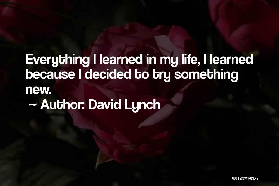 One Can Only Try So Much Quotes By David Lynch
